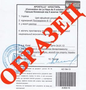 Министерство юстиции российской федерации.